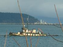 tugboat in Fidalgo Bay
